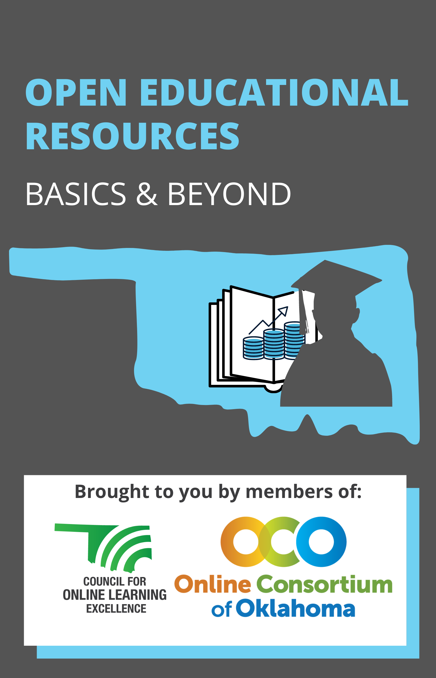 Cover image for Open Educational Resources:  Basics & Beyond